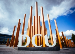 DCU Executive MBA